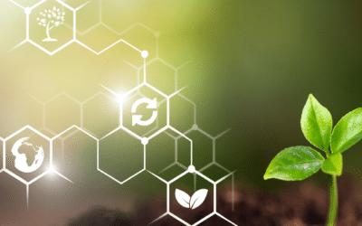 Nachhaltige Geldanlage: Interesse der Anleger nimmt weiter zu
